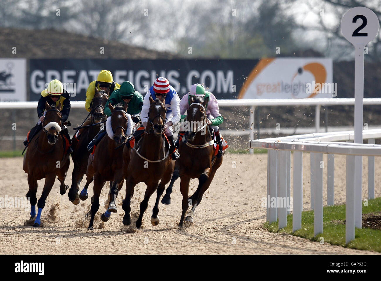 Horse racing invitation only day stock photos horse racing horse racing invitation only day great leighs racecourse stock image stopboris Choice Image