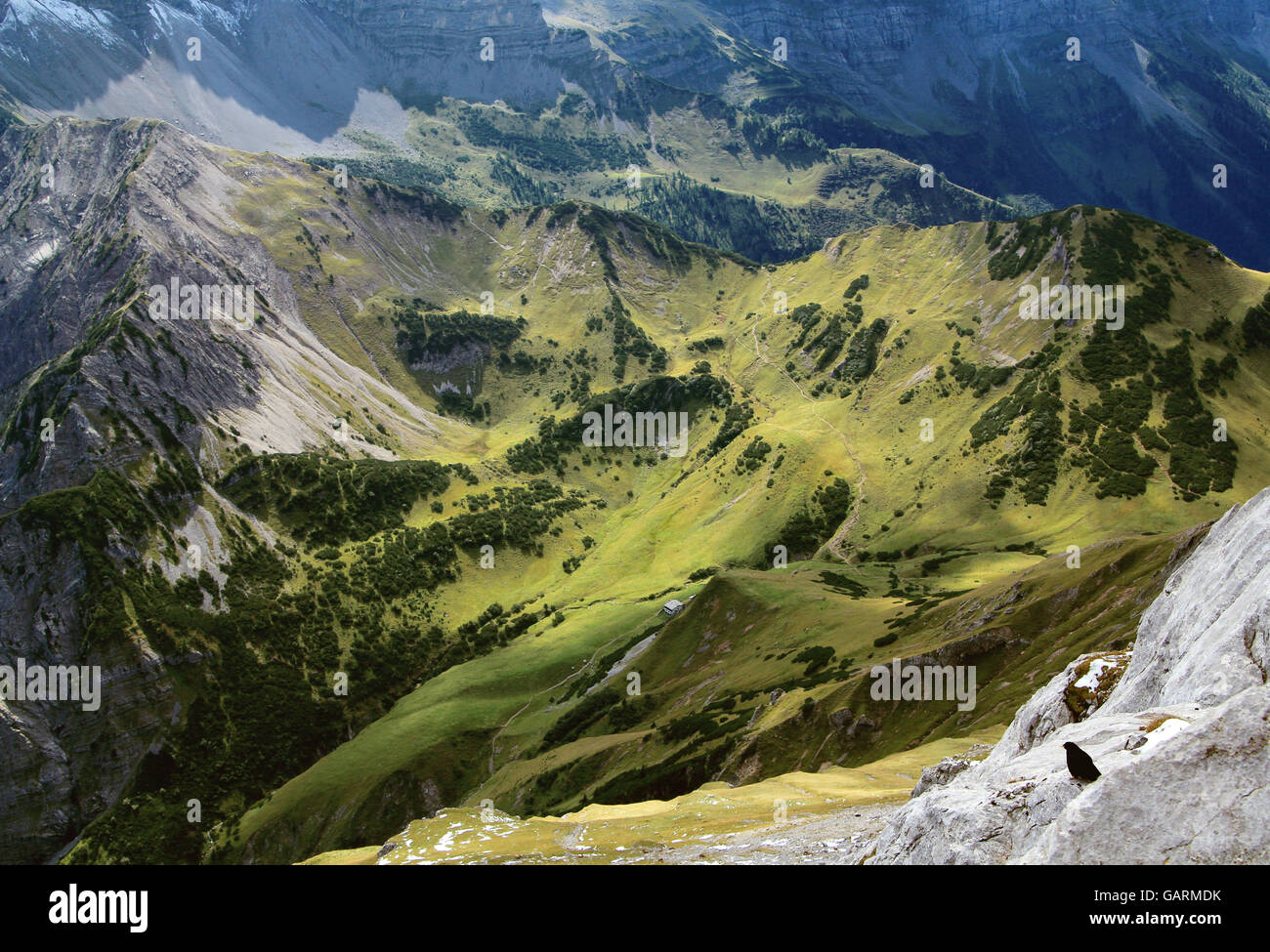 view on a green alp in the karwendel mountains in the alps - Stock Image