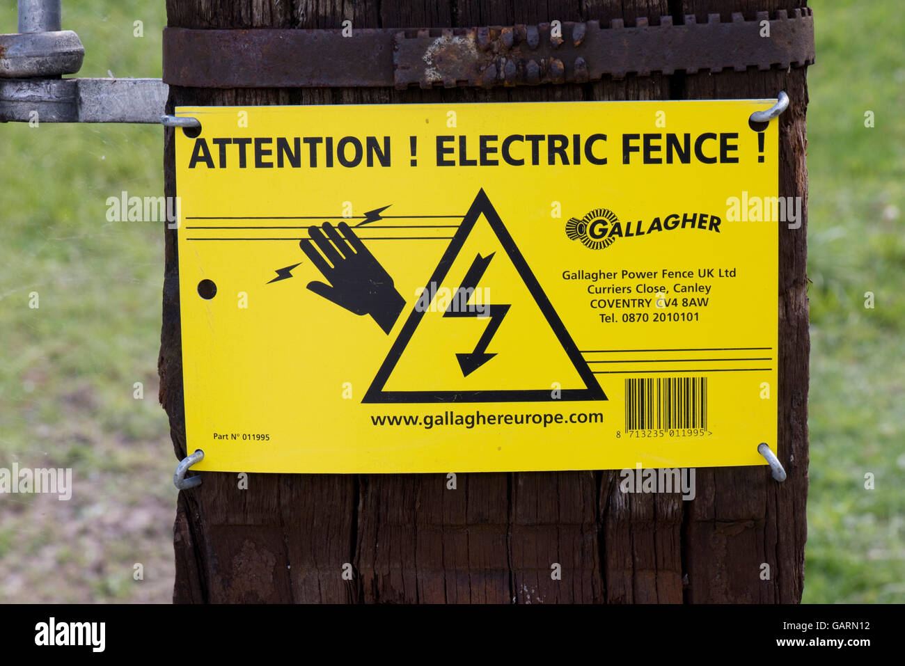 A sign warning of and electric fence surrounding a field of sheep 'ATTENTION! ELECTRIC FENCE! - Stock Image