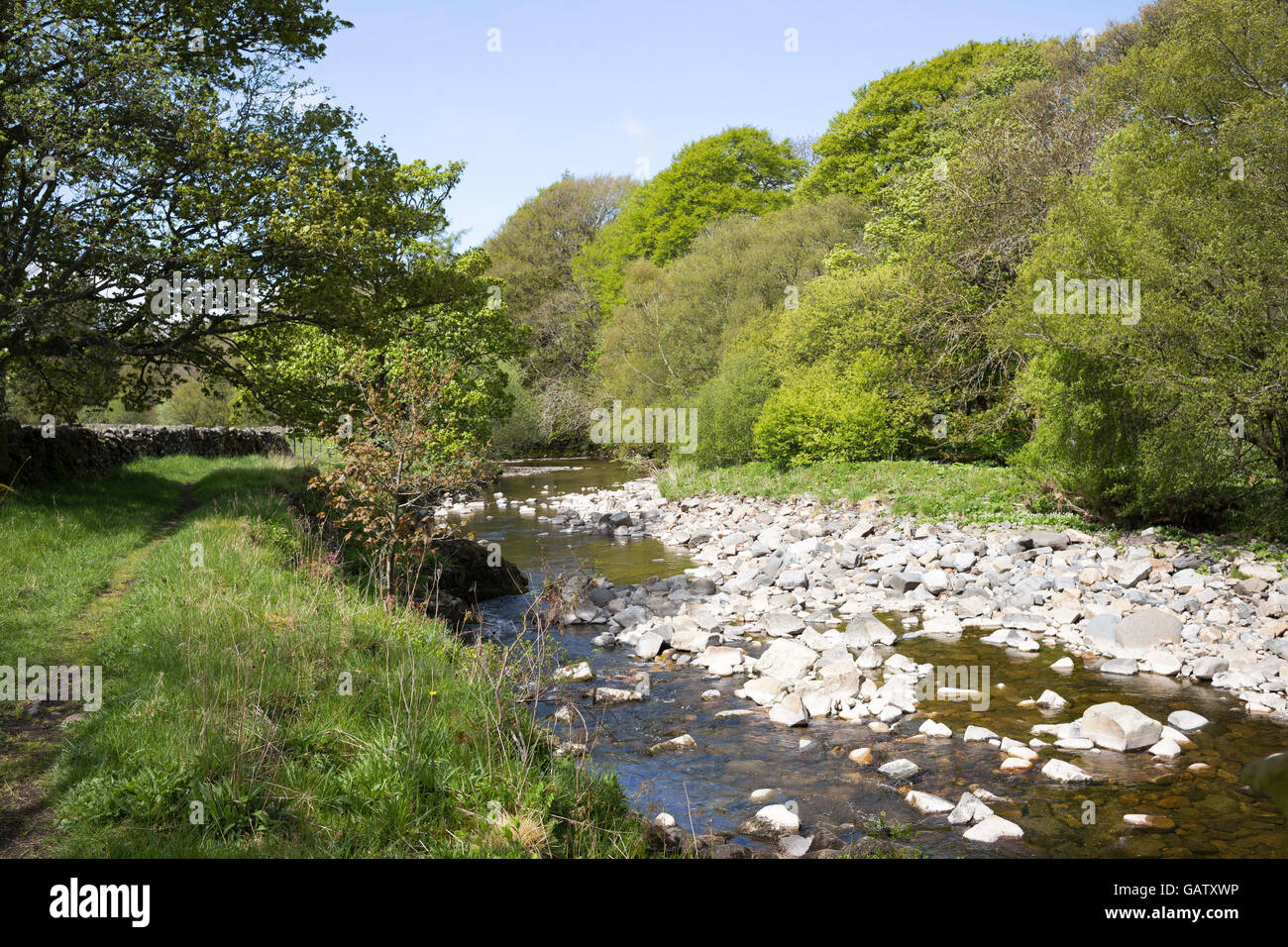 Cobbles at rest in the upper reaches of the River South Tyne, Garrigill, Cumbria, England, UK - Stock Image