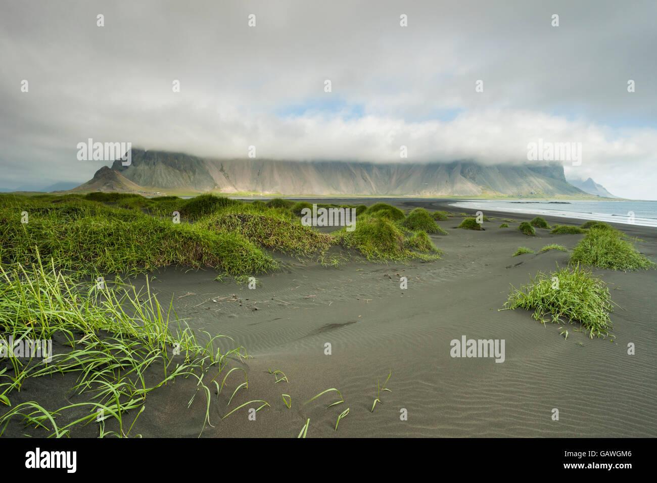 Stokksnes headland, Iceland. - Stock Image