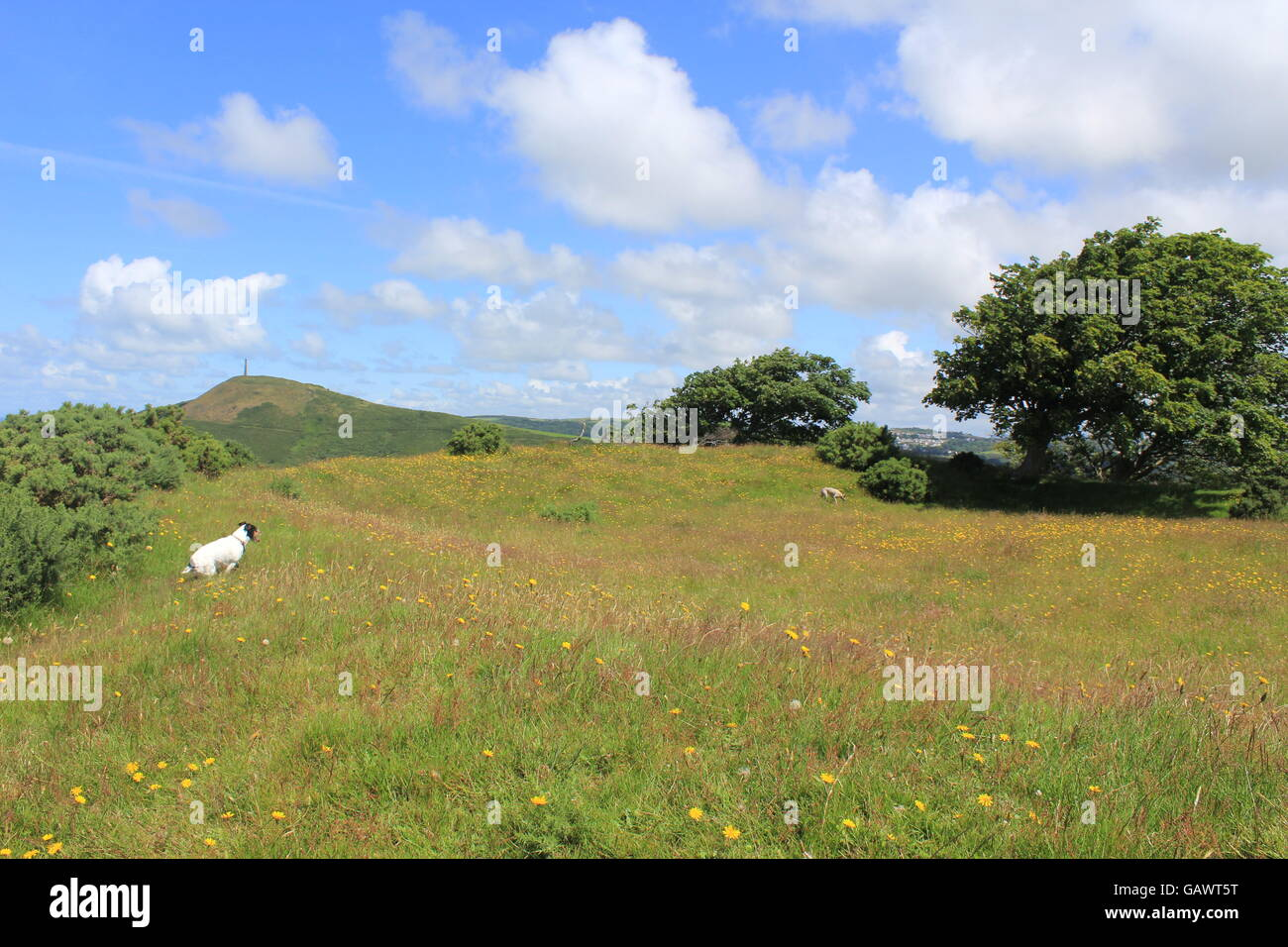 Aberystwyth Ceredigion Wales UK Weather 5th july 2016 A great day to visit historical sites & the site of the original Stock Photo