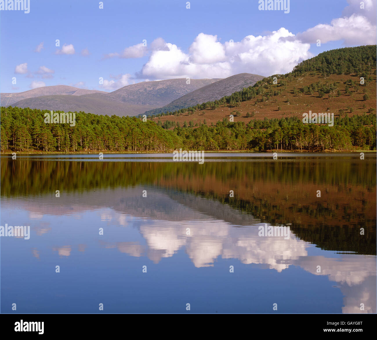 Loch an Eilein, Cairngorms, Scottish Highlands - Stock Image