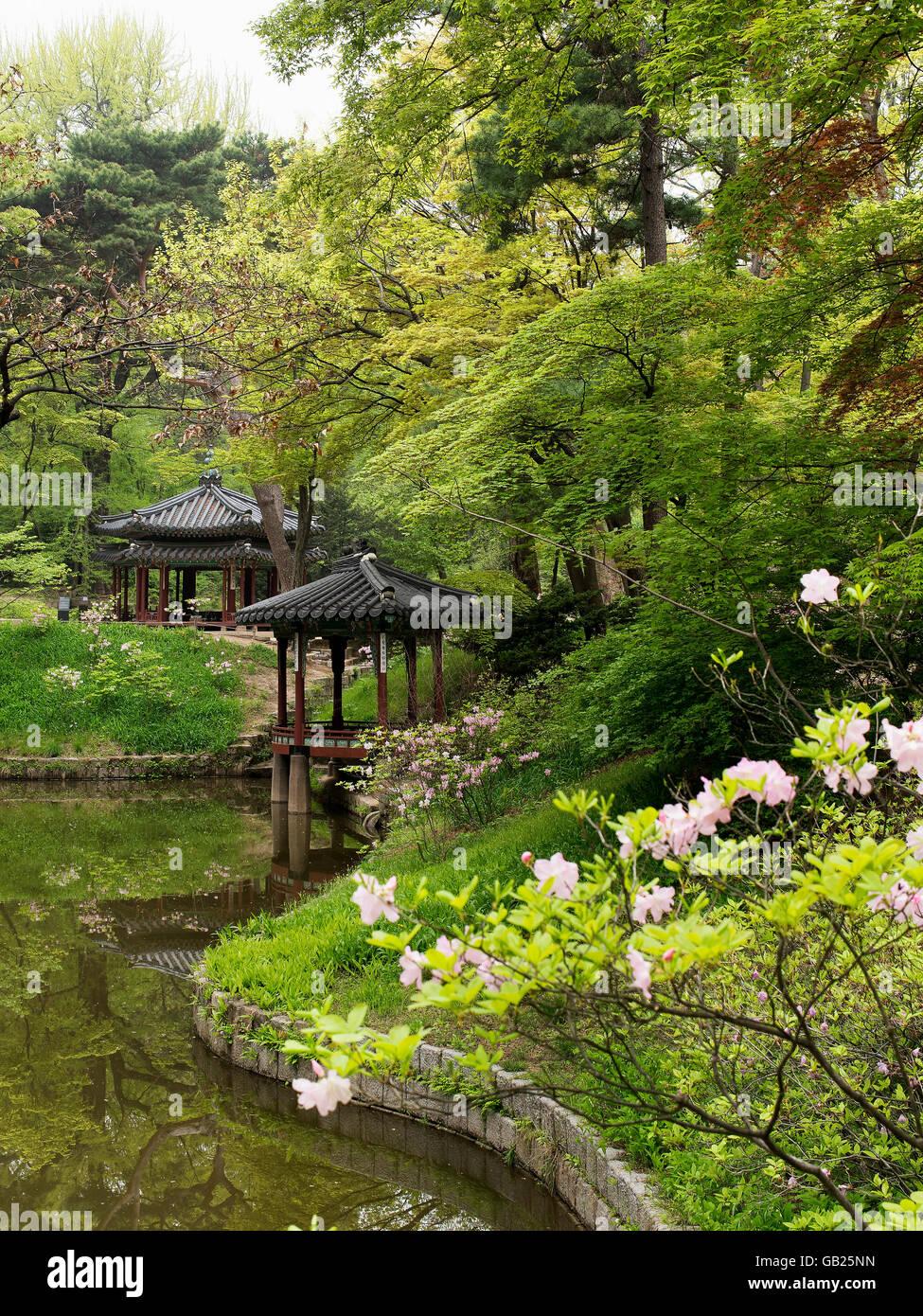 Near Jondeokjeong Pavilion In The Secret Garden Of Palace Stock