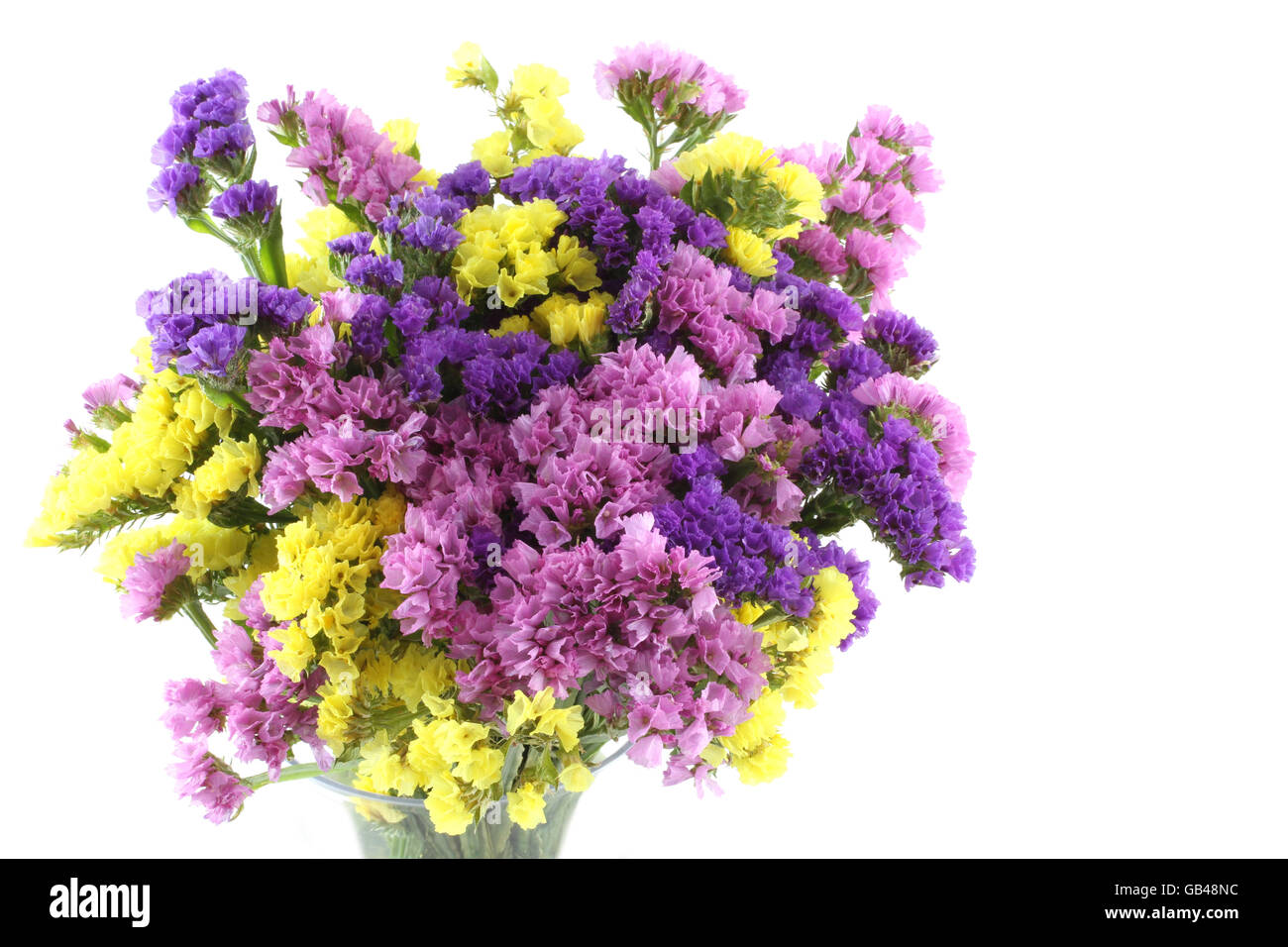 Pink, purple, yellow Statice flowers bouquet on white background ...