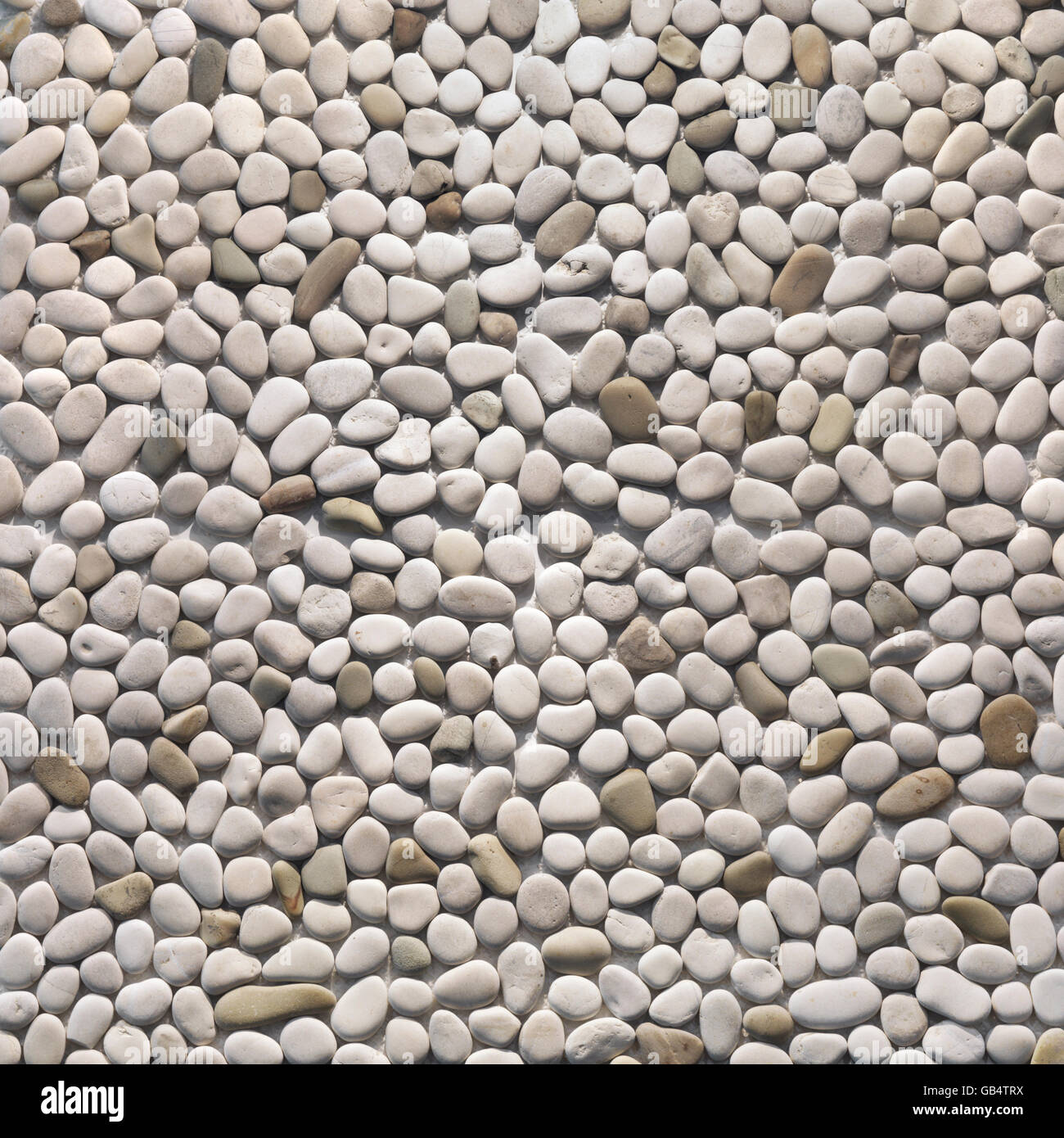 Ivory pebbles, interior and exterior stone finish, texture, background - Stock Image