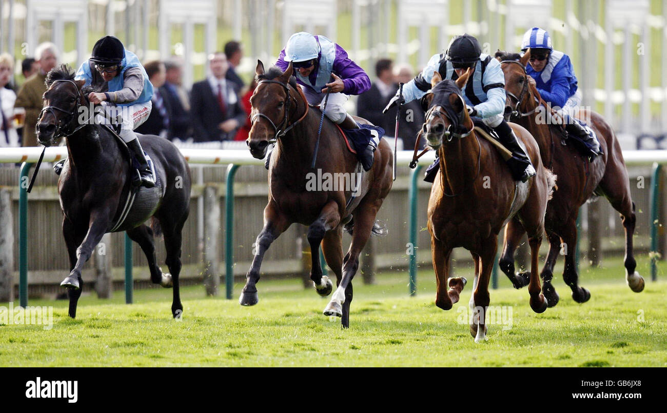 Horse Racing - Newmarket Racecourse - Cambridgeshire Meeting - Day Two - Stock Image