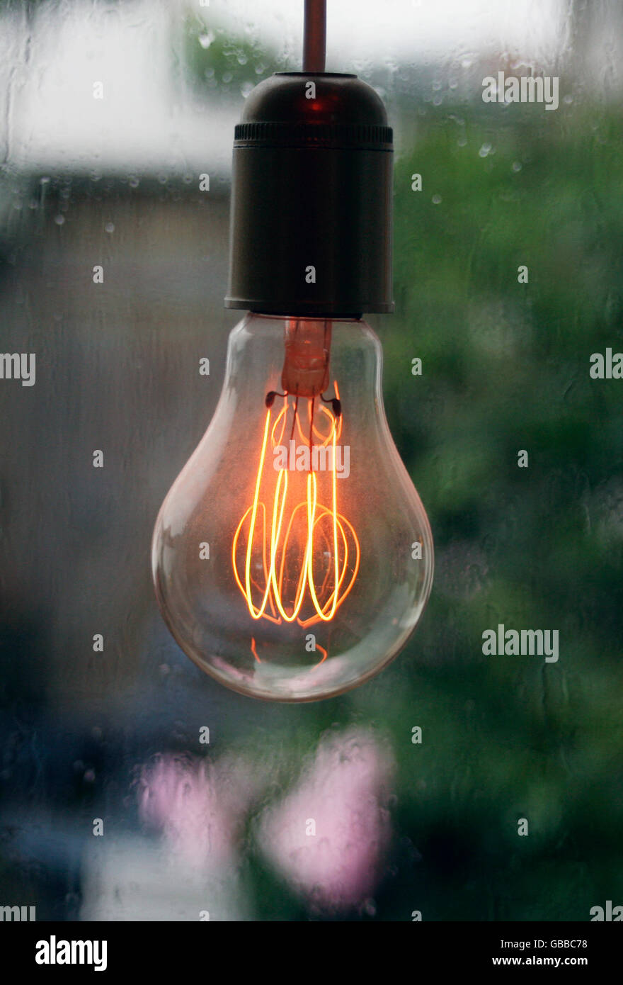 Incandescent lamp filaments - Stock Image