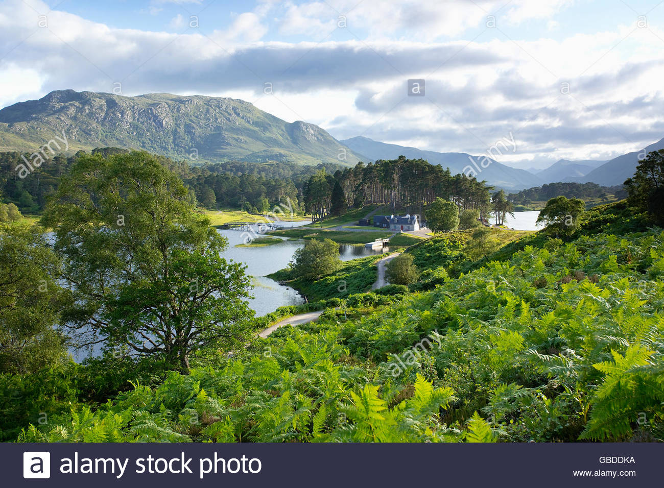 A cottage by the side of Loch Affric in Glen Affric, Highlands of Scotland. - Stock Image