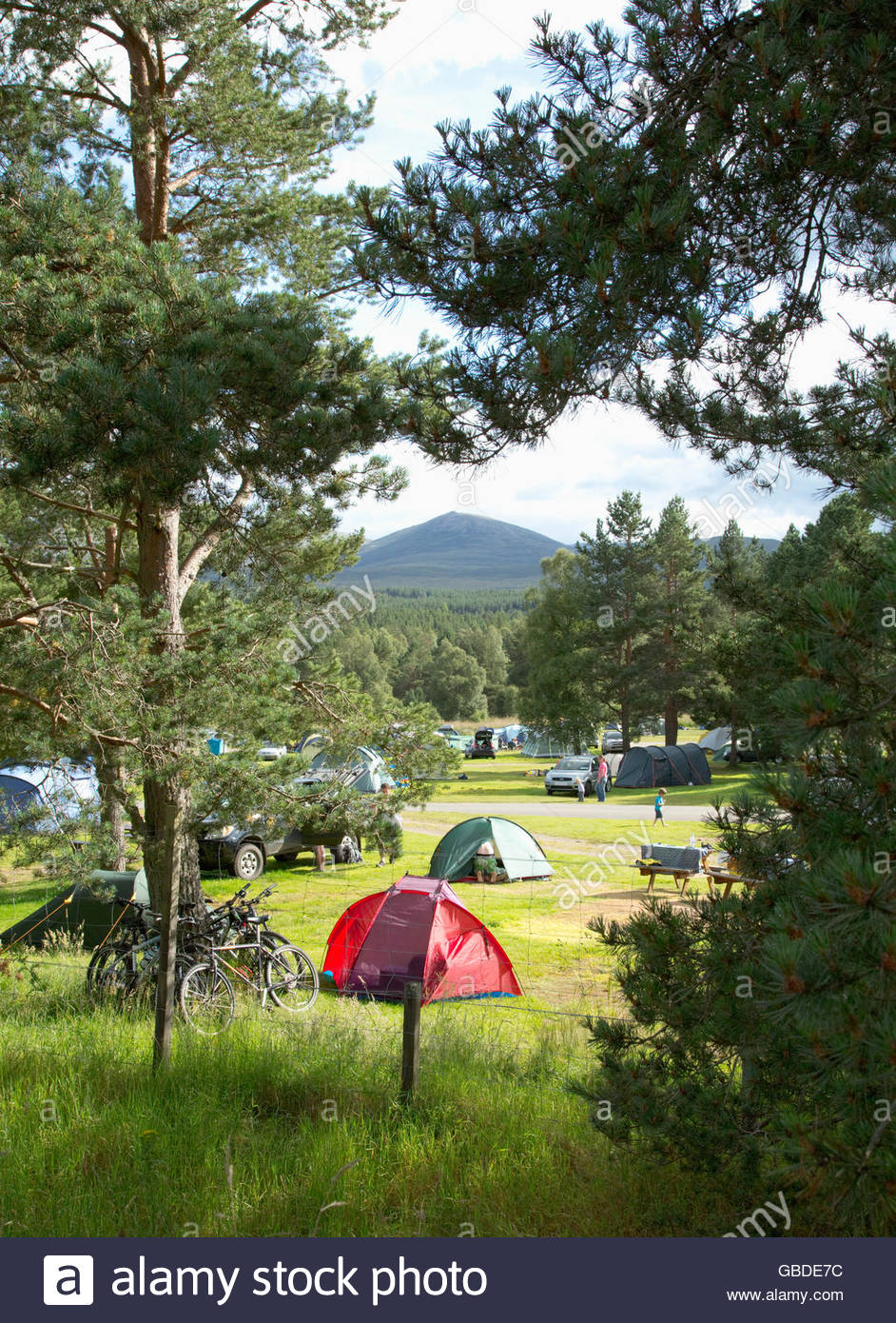 The busy campsite at Glenmore Forest Park near Aviemore, Highlands of Scotland. - Stock Image