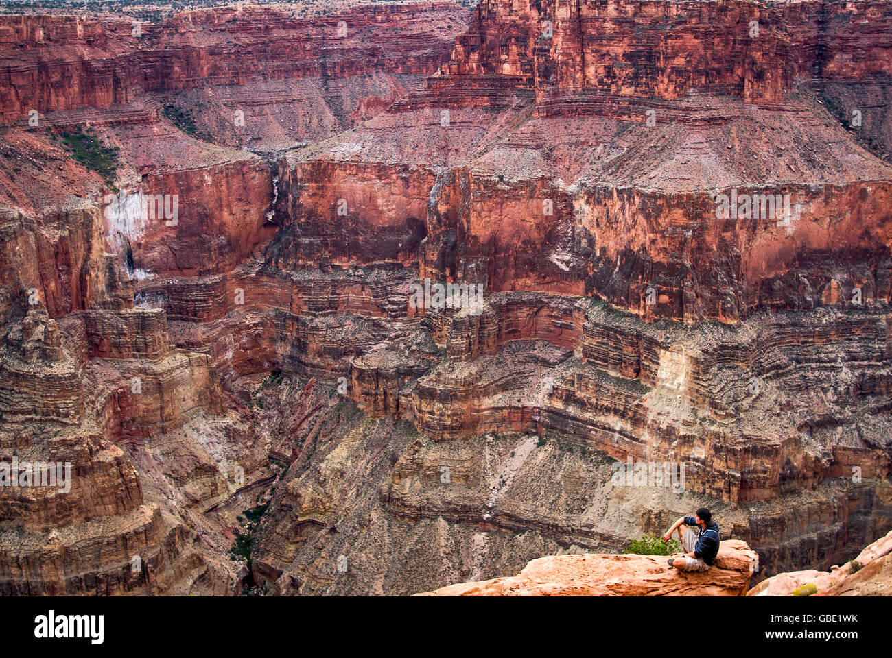 Hiker looking at Grand Canyon from Toroweap Point, 1000 meters above Colorado River, Arizona, USA Stock Photo