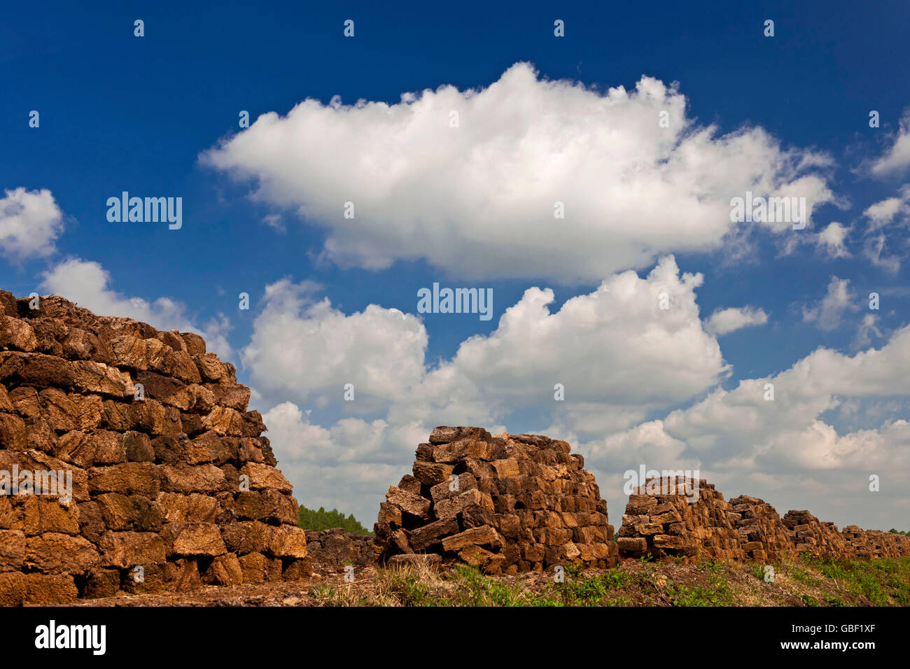 Sods of peat, Goldenstedter Moor, Lower Saxony, Germany - Stock Image