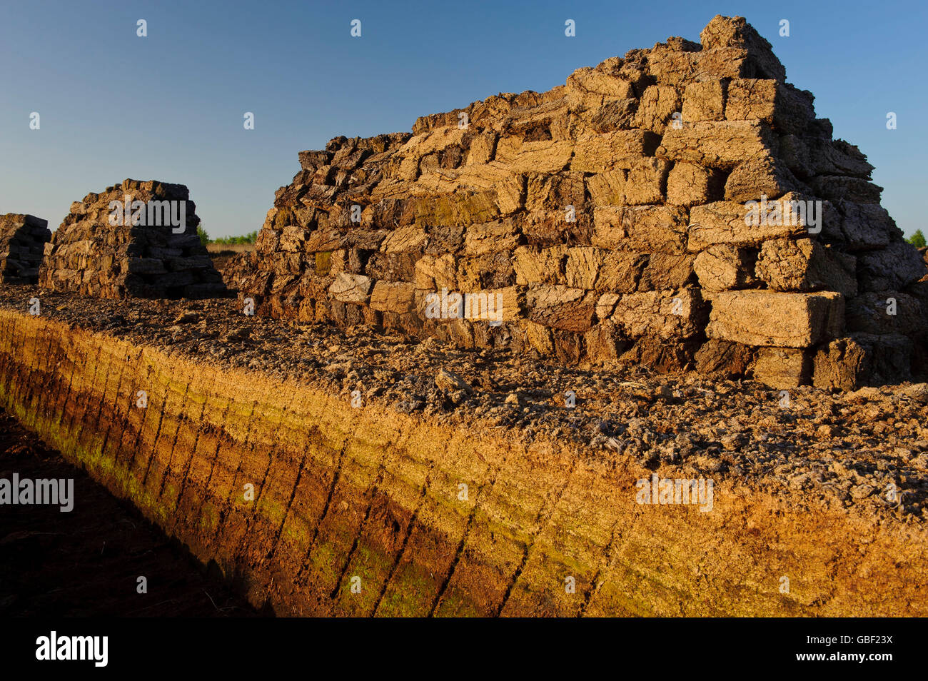 Sods of peat, Goldenstedter Moor, Diepholzer Moorniederung, Lower Saxony, Germany - Stock Image