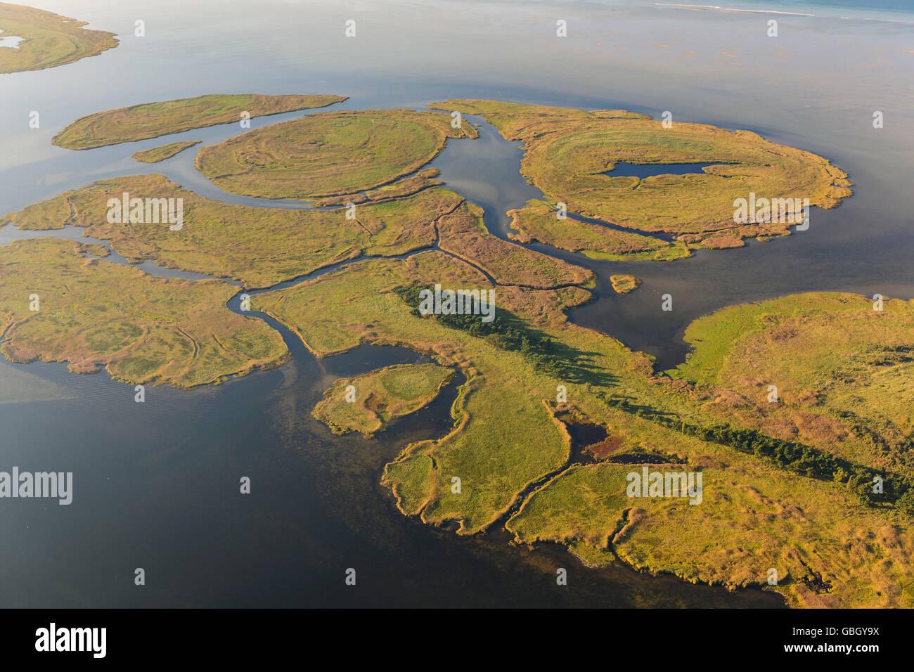 Kleine Werderinseln, Fischland-Darss-Zingst, national park Vorpommersche Boddenlandschaft, Mecklenburg-Western Pommerania, - Stock Image