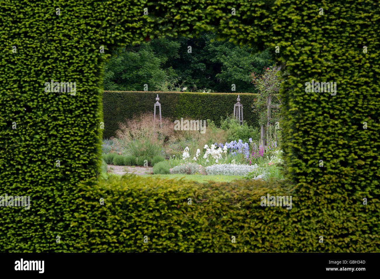 Looking through a hole in the hedge into a garden at Waterperry gardens, Wheatley, Oxfordshire. England - Stock Image