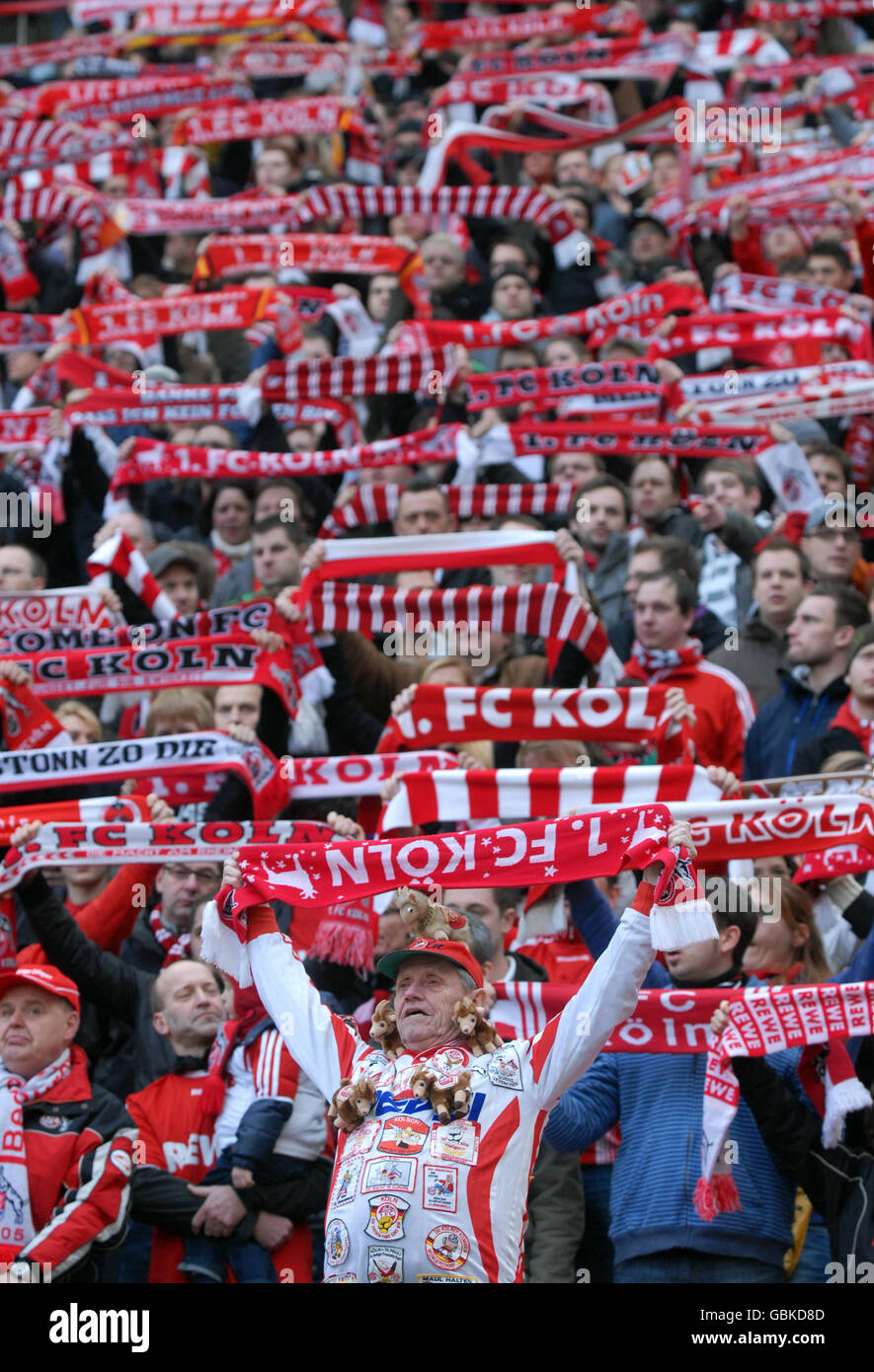 Cologne fans holding up their scarves, Bundesliga federal league, 1. FC Koeln - FSV Mainz 05 4:2, Rhein-Energie - Stock Image