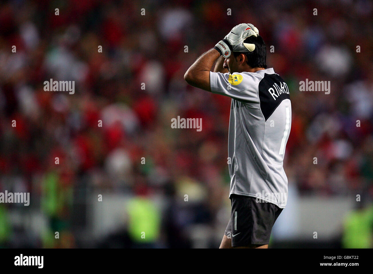 Despair for Portugal goalkeeper Ricardo as his side lose 1-0 to Greece Stock Photo