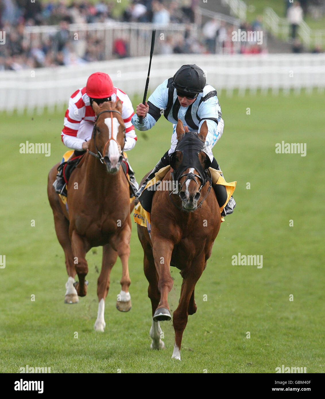 Horse Racing - Bet Chronicle City Day - Chester Racecourse - Stock Image