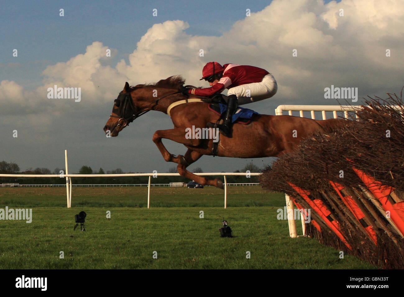 Horse Racing - Huntingdon Racecourse - Stock Image