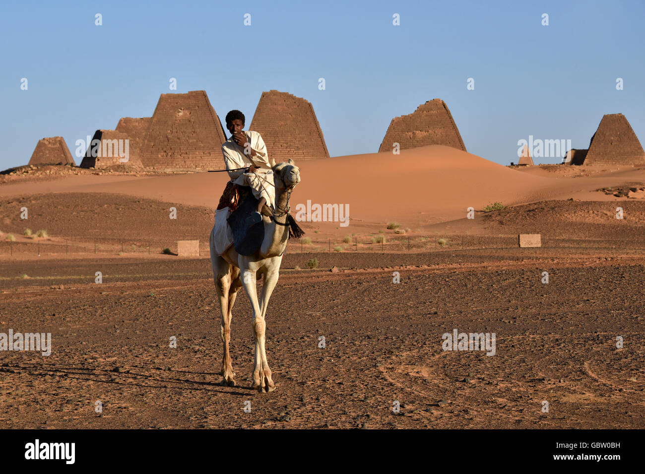 Africa, Sudan, Nubia, nomad with dromedary, Pyramids of Meroe in background - Stock Image