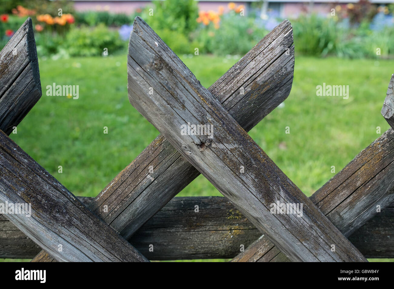 Old wooden fence in a front garden with blurred meadow and flowers - Stock Image