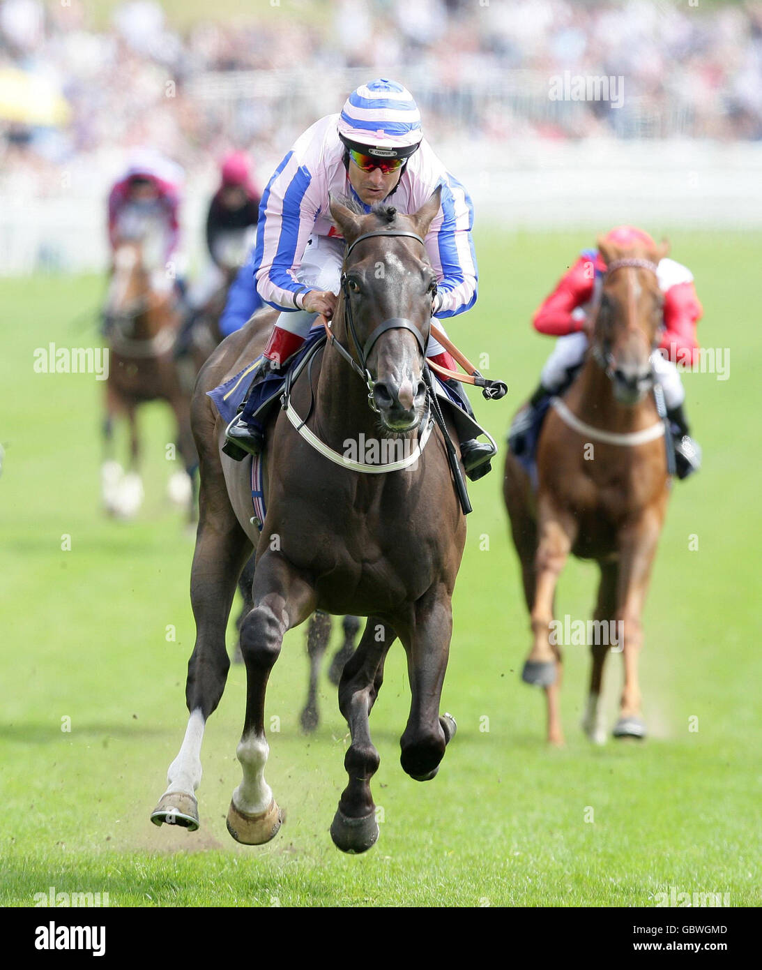 qipco sussex stakes betting 2021 jeep
