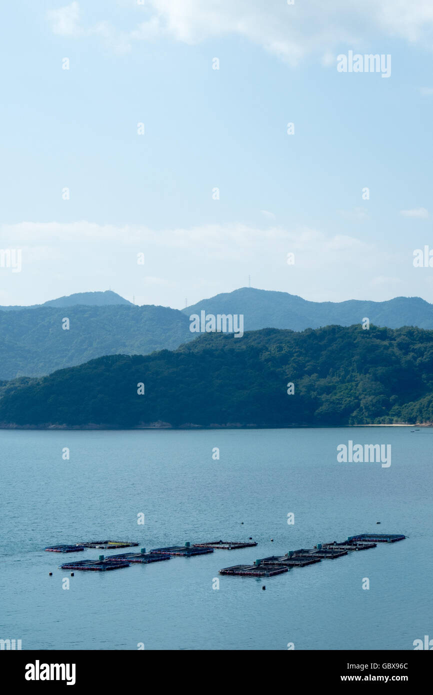 Oyster farming in the Seto Inland Sea, Japan. Stock Photo