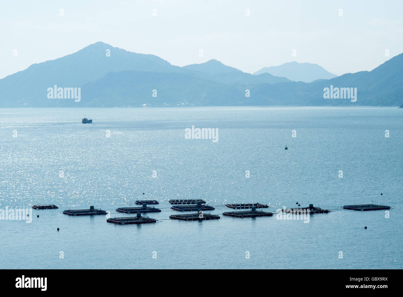 Oyster farming in the Seto Inland Sea, Japan. - Stock Image