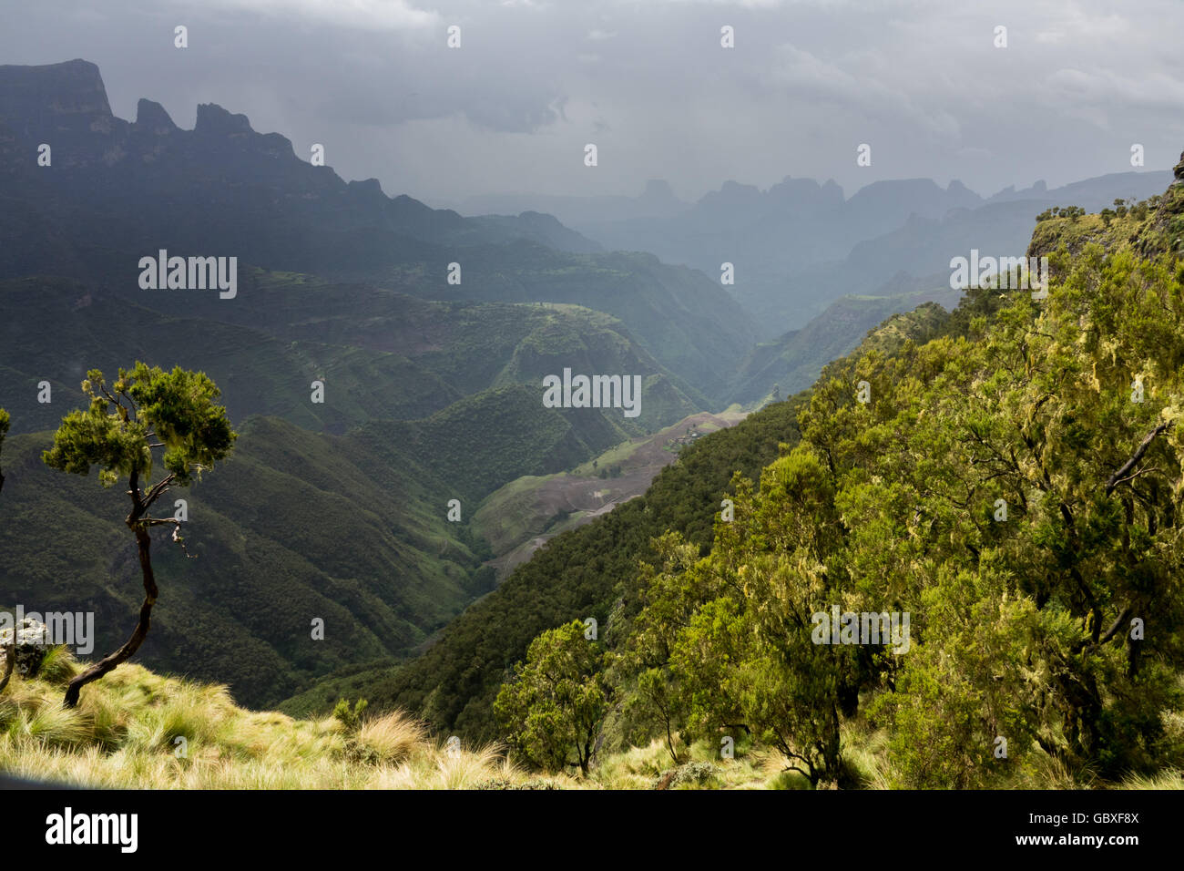 overlooking a valley in Simien Mountains National Park, Ethiopia, a UNESCO World Heritage Site. - Stock Image