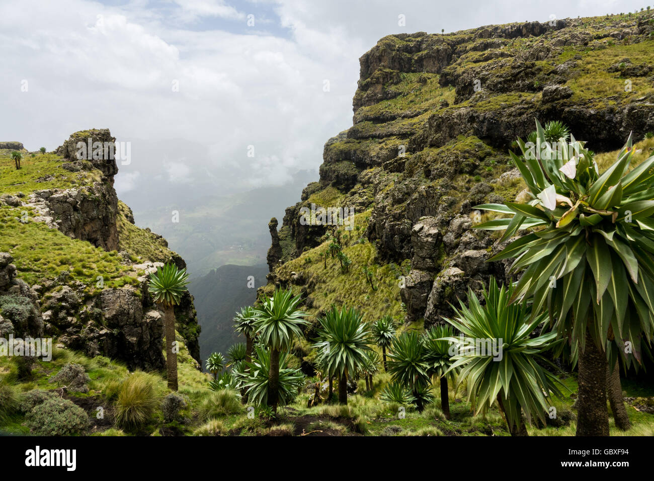 looking through a canyon in the Simien Mountains National Park, Ethiopia - Stock Image