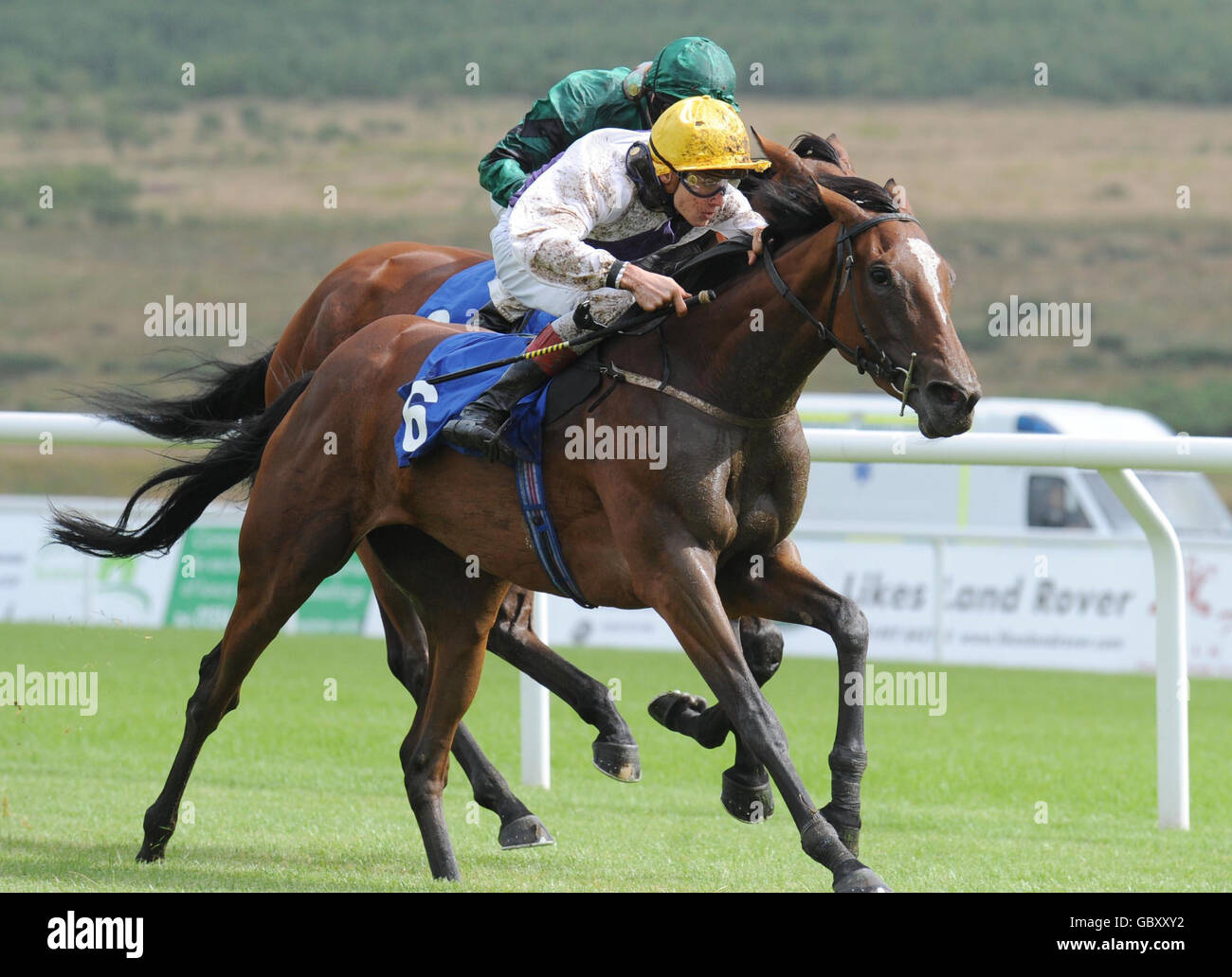 Horse Racing - Ffos Las Racecourse - Stock Image
