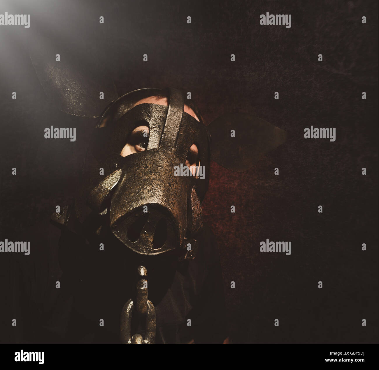 A crazy scary man is wearing a metal pig mask with a chain on a black background for a fear or halloween concept - Stock Image