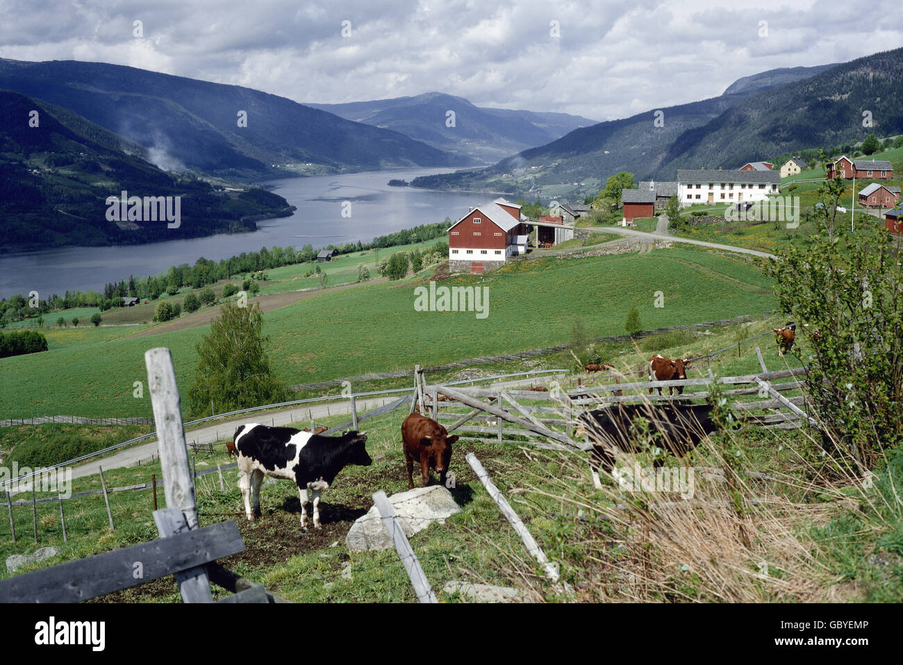 geography / travel, Norway, Gudbrandsdal, townscape near Fretten, 1981, Additional-Rights-Clearences-NA - Stock Image
