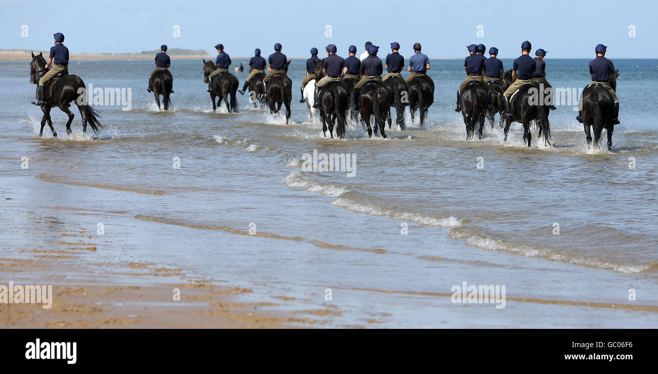 Household Cavalry Mounted Regiment training Stock Photo