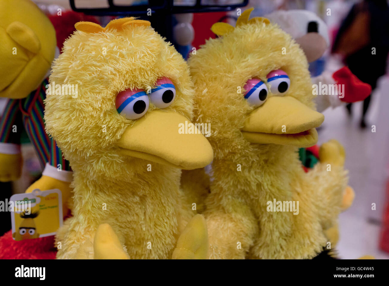 Big Bird hand puppets at toy store - USA - Stock Image