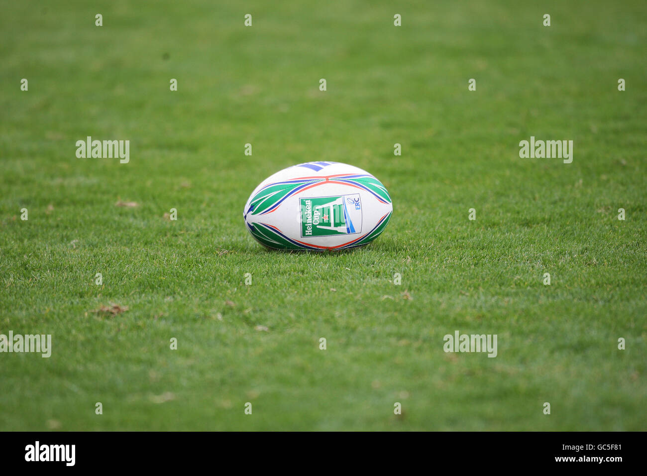 Rugby Union - Glasgow Warriors Training Session - Firhill - Stock Image