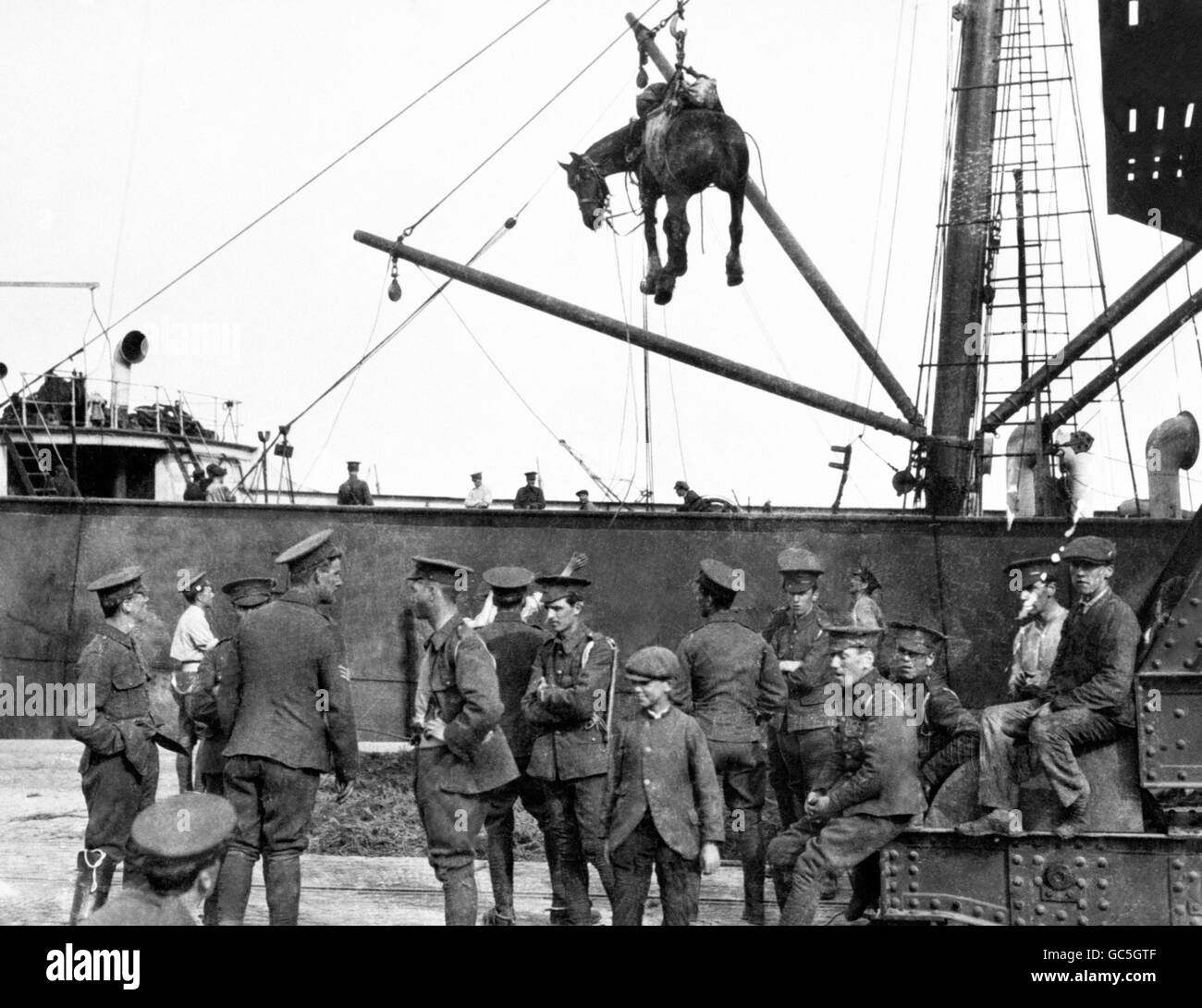World War One - HORSES UNLOADED AT BOULOGNE - Stock Image