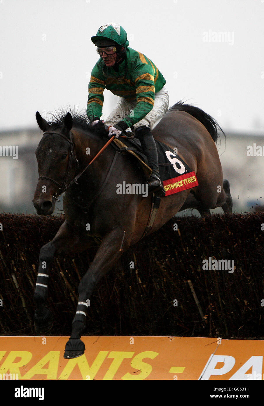 Horse Racing - The HEROS CHarity Challow Hurdle Day - Newbury Racecourse - Stock Image