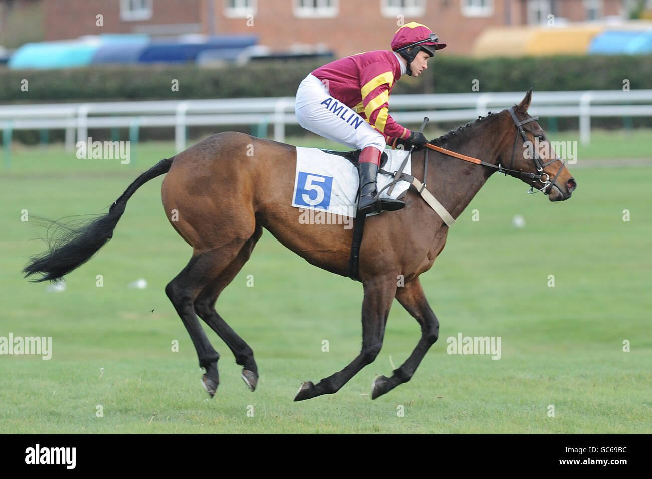 Horse Racing - Leicester Racecourse - Stock Image