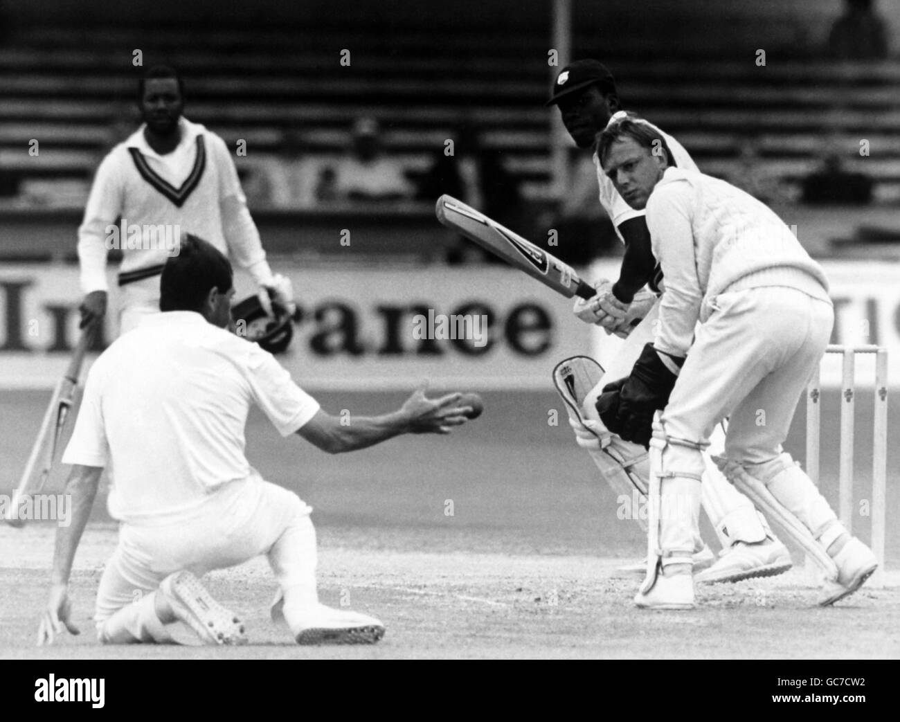 Cricket - West Indies in England 1988 (1st Test) - England v West Indies - Trent Bridge, Nottingham - Stock Image