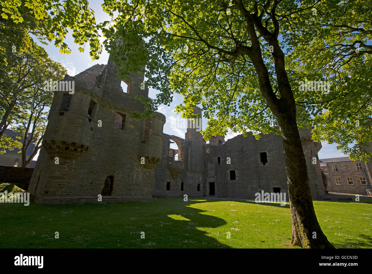 The Ruins of the Earls Palace in Kirkwall Orkney Isles. Scotland.UK.  SCO 10,587. - Stock Image