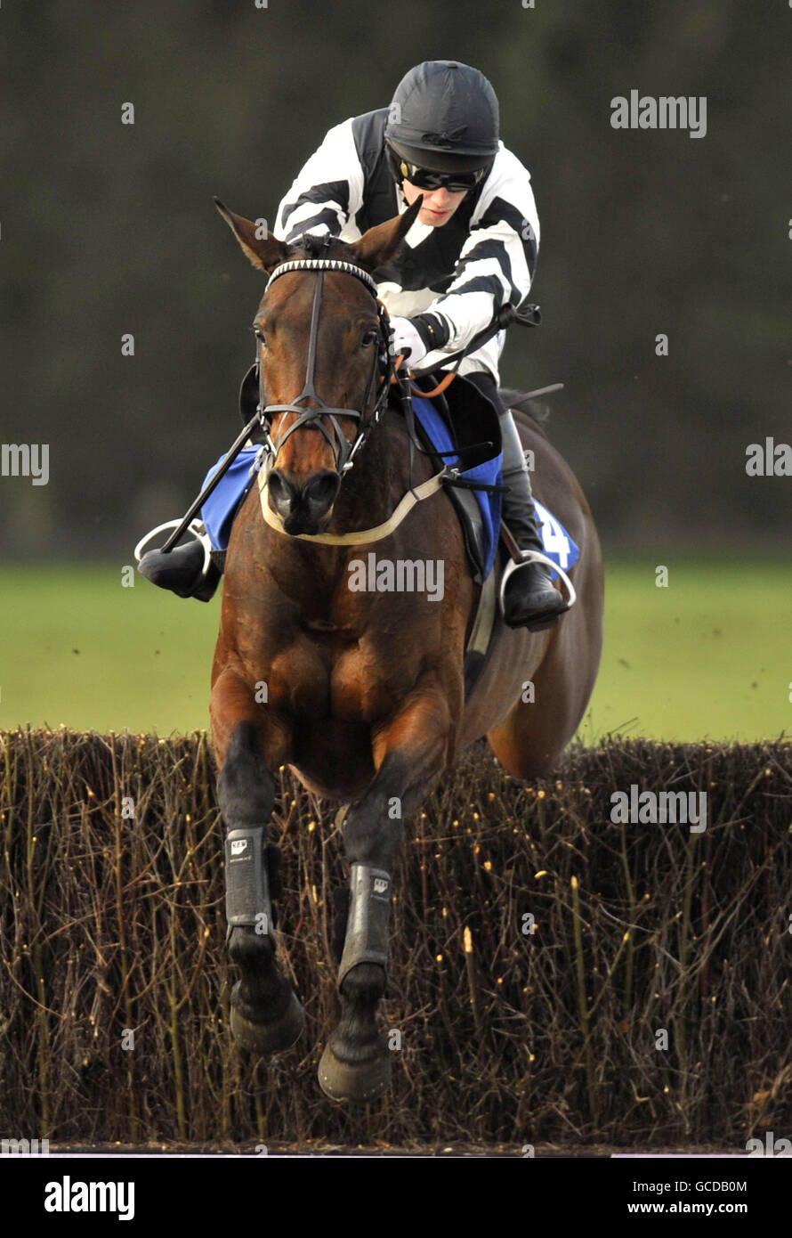 Horse Racing - Family Race Day with TV's Sportacus - Fontwell Racecourse - Stock Image