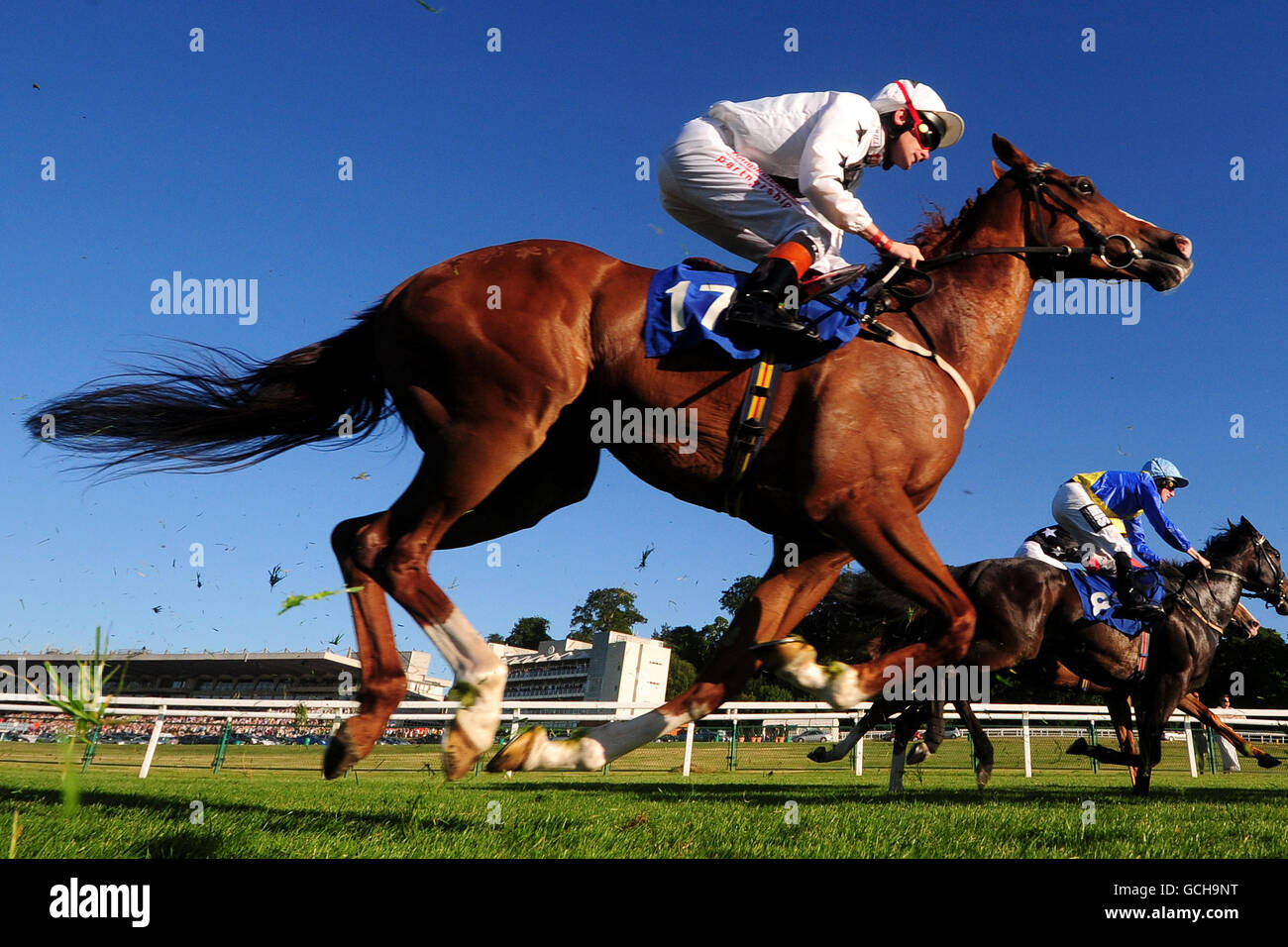 Lengths To Which Photoshop Jockeys At >> Horse Racing Races Full Length Saddle Jockey Cap Goggles Whip Stock
