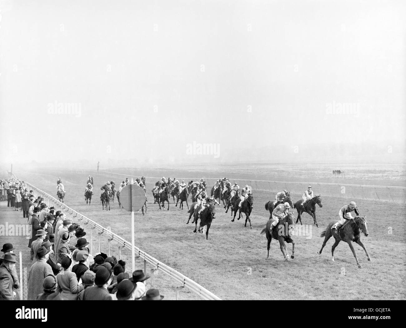 Horse Racing - The Theale Maiden Plate - Newbury Racecourse Stock Photo