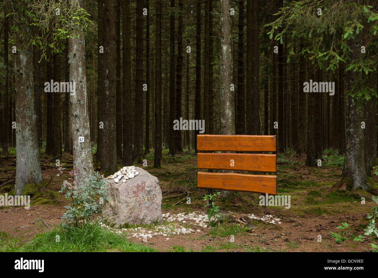 Europe, Germany, North Rhine-Westphalia, memorial stone and plaque of the Battle of the Bulge in a forest near Hellenthal - Stock Image