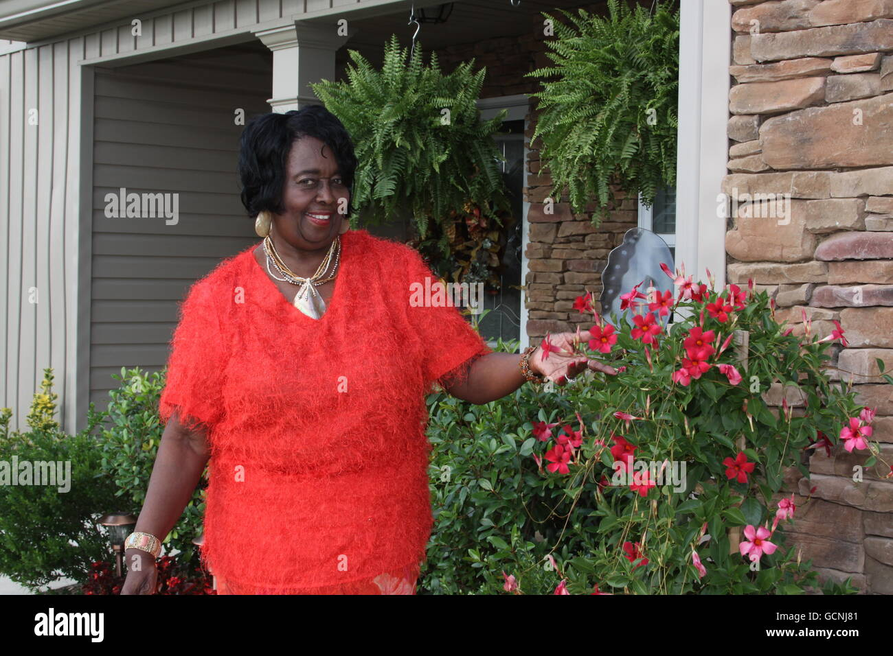 black female homeowner inspecting roses - Stock Image