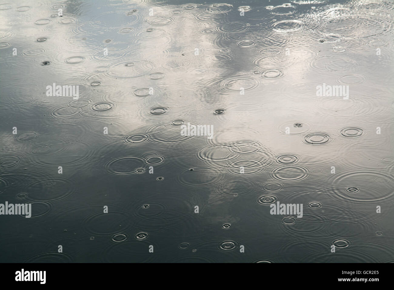 Droplets of rain hitting a smooth sea - Stock Image