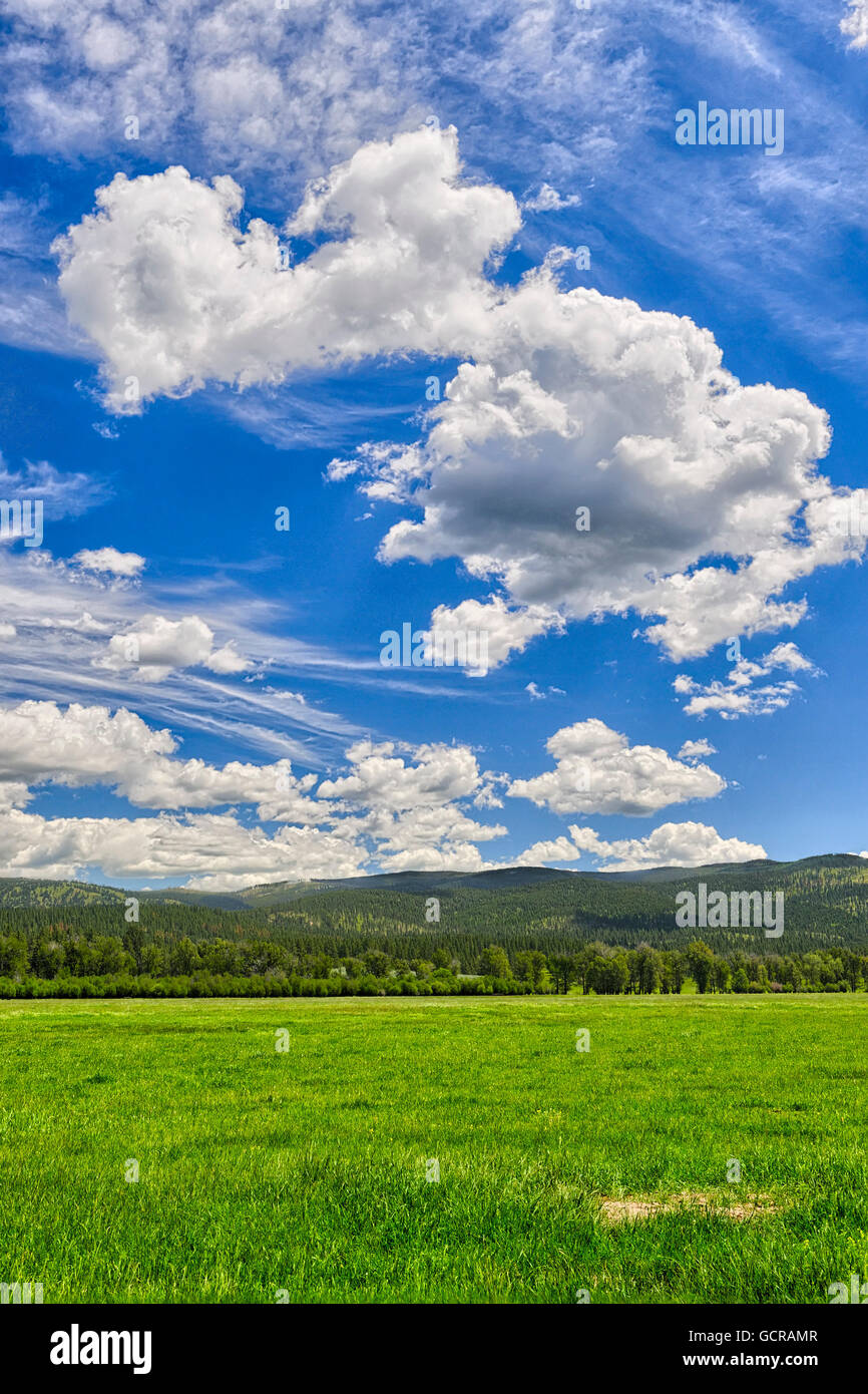 Open grasslands and big skies, Montana. Stock Photo