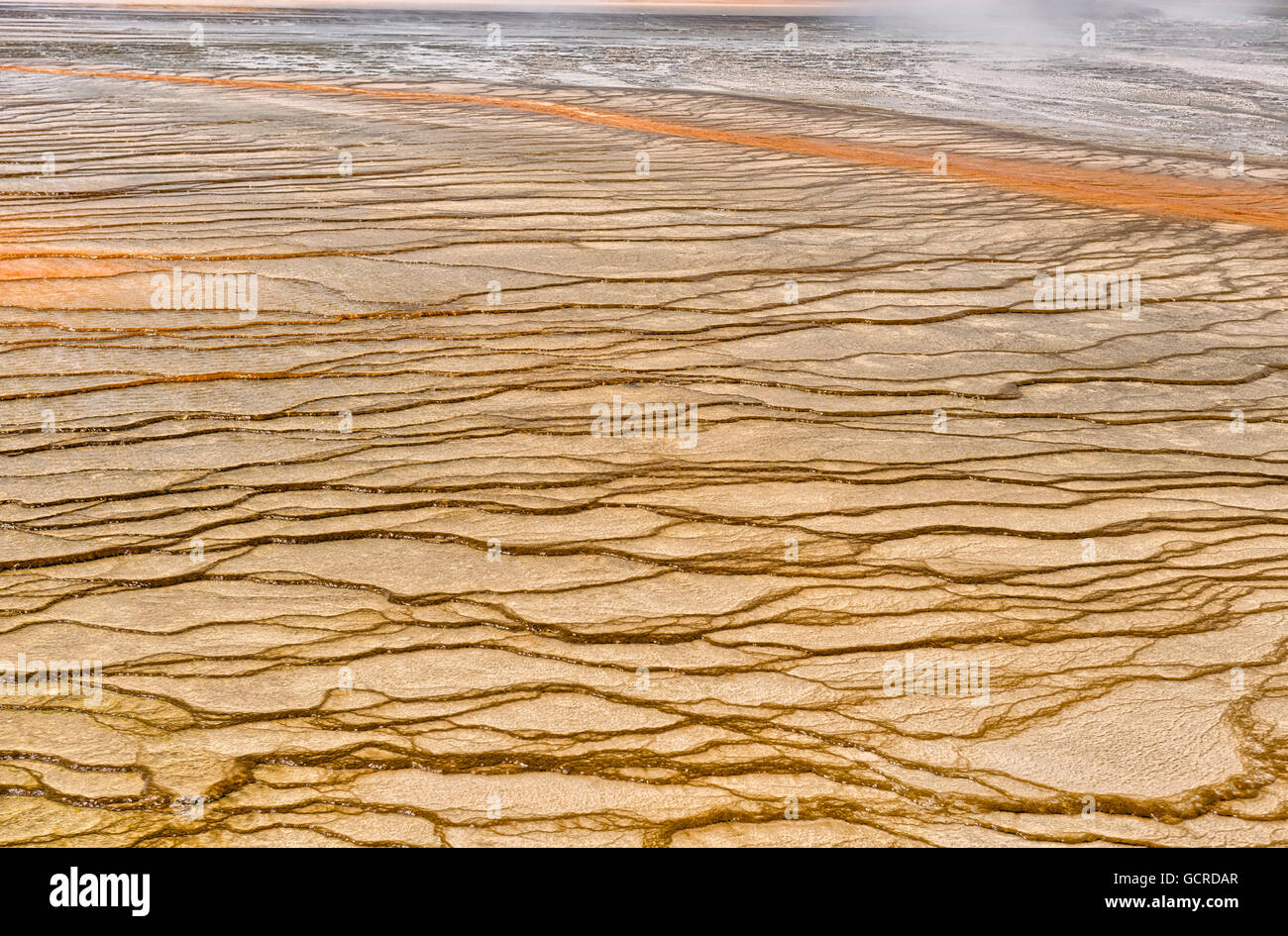 Colorful algea patterns surrounding the Grand Prismatic Spring, Yellowstone National Park - Stock Image