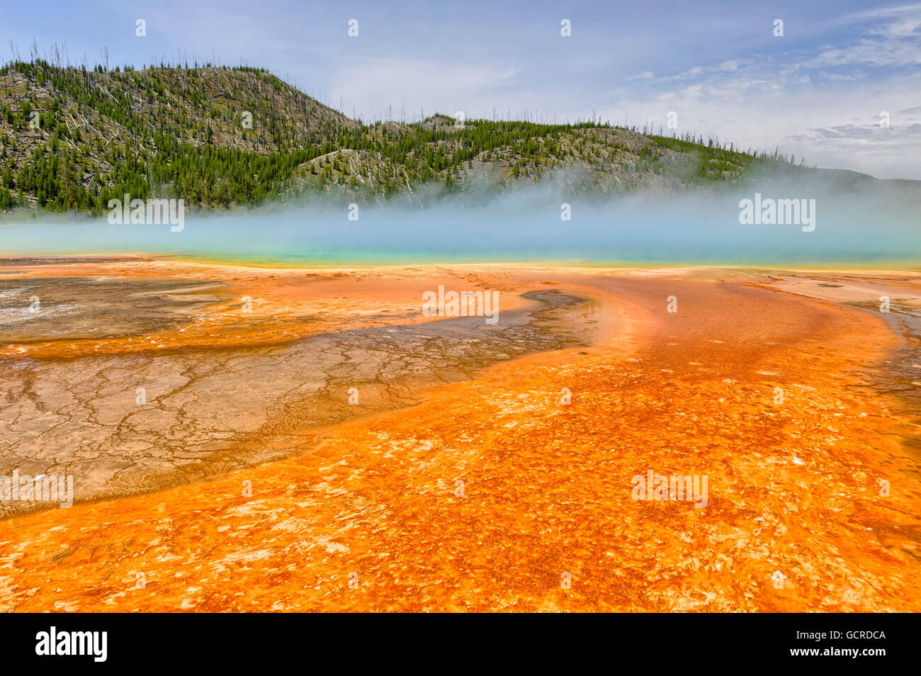 Colorful patterns in the algea and bacteria layers of the Grand Prismatic Spring, Yellowstone National Park - Stock Image